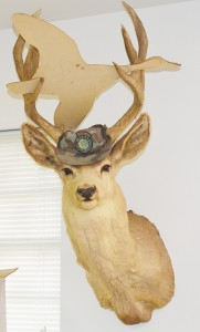 A mounted mule deer, taken from the J.S. Murphree Wildlife Management Area in 1963, wears a Texas Parks & Wildlife camoflauge hat in Jim Sutherlin's office. Sutherlin, Texas Parks & Wildlife Upper Coast Wetland Ecosystem Project leader and area manager for the J.D. Murphree Wildlife Management Area for the last 25 years, will retire from his Texas Parks & Wildlife posts on June 30.