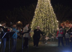 Groves Mayor Pro Tem Karen Theis, center, lights the city Christmas tree kicking off the holiday season in the city at Celebration Park on Friday. Mary Meaux/The News